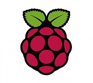 Πατήστε στην εικόνα για να τη δείτε σε μεγέθυνση.  Όνομα:  Raspberry-Pi-Logo-600x534.jpg Εμφανίσεις:  10 Μέγεθος:  31,4 KB ID: 103841