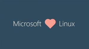 Πατήστε στην εικόνα για να τη δείτε σε μεγέθυνση.  Όνομα:  microsoft-linux.png Εμφανίσεις:  498 Μέγεθος:  36,1 KB ID: 173651